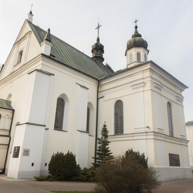 """Church of St. Anna in Biala Podlaska"" stock image"