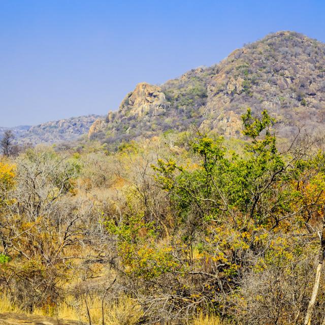 """""""Landscape view of Matobo National Park, Zimbabwe"""" stock image"""