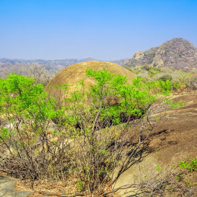 """""""Landscape view of Matobo National Park, Zimbabwe."""" stock image"""