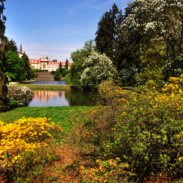 """""""Pruhonice park with castle reflecting in lake in spring time"""" stock image"""