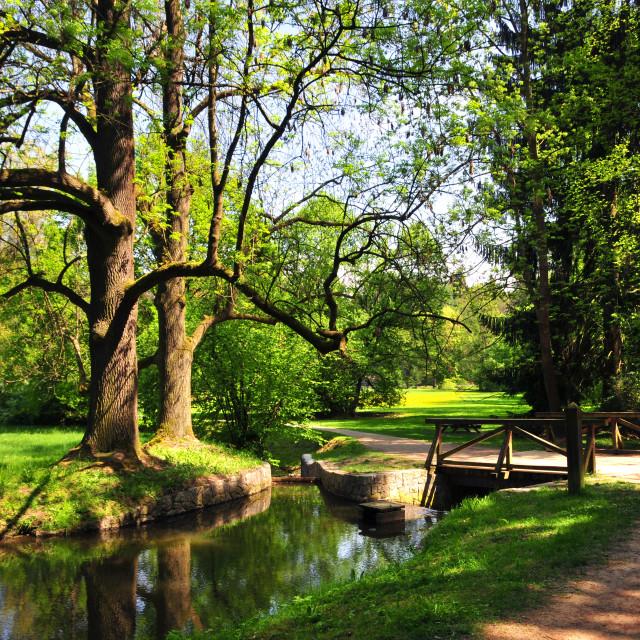 """Pruhonice Park in spring time. Prague"" stock image"