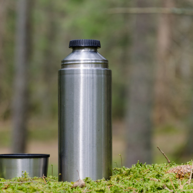"""""""Thermos and cup on a mossy ground"""" stock image"""
