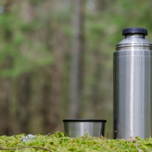 """""""Thermos in a mossy forest"""" stock image"""