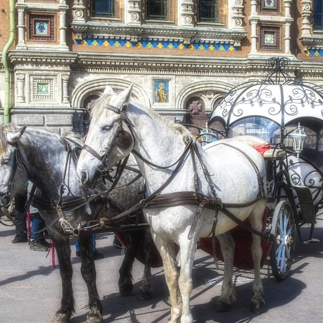 """Fairy Tale transport."" stock image"