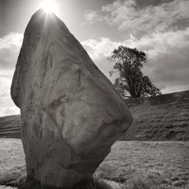 """Avebury rock and tree"" stock image"