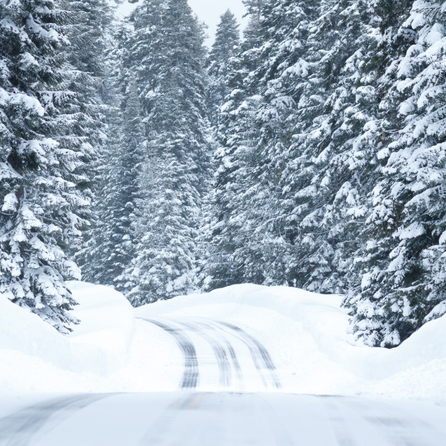 """""""Snowy road with icy conditions"""" stock image"""