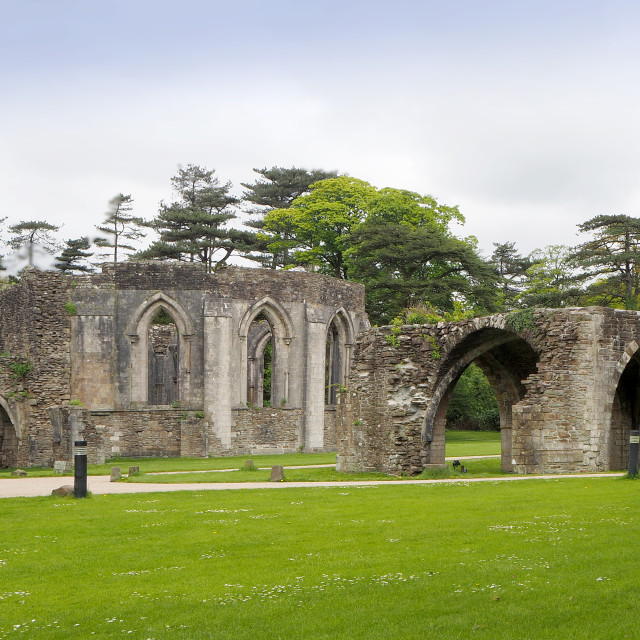 """""""The Abbey ruins at Margam Country Park"""" stock image"""
