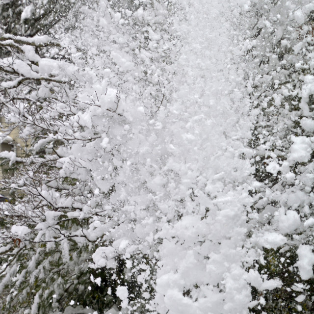 """""""A Downpouring of Winter Snow"""" stock image"""
