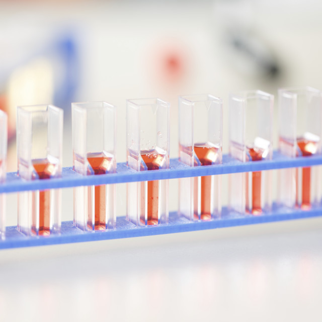 """""""Cell cultures"""" stock image"""