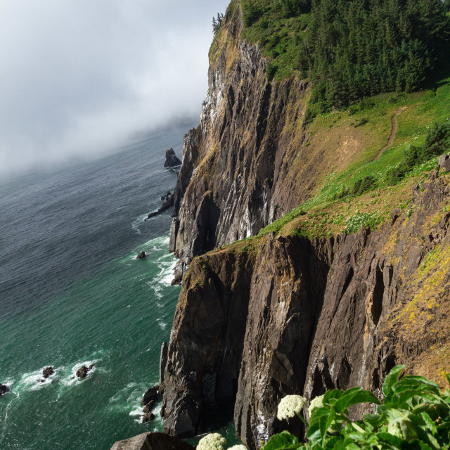 """Oregon coast cliffside"" stock image"