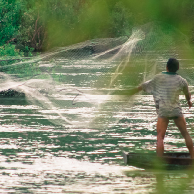 """Fisherman casting his net - Si Pan Don, Laos 2"" stock image"