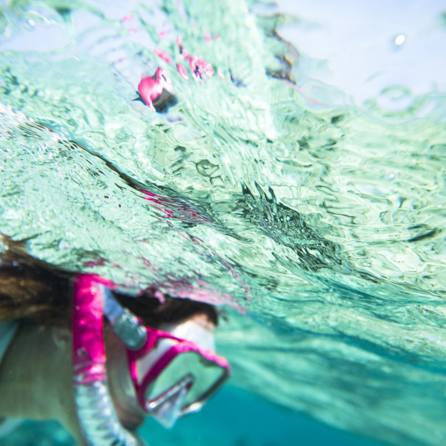 """Woman underwater snorkeling a coral reef"" stock image"