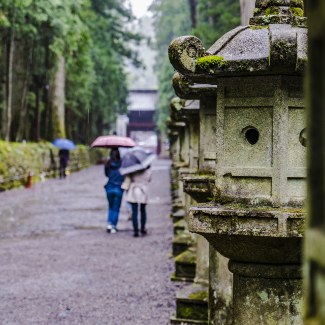"""Walk in Nikko 1"" stock image"