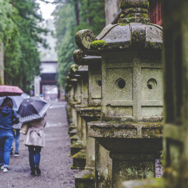 """Walk in Nikko"" stock image"