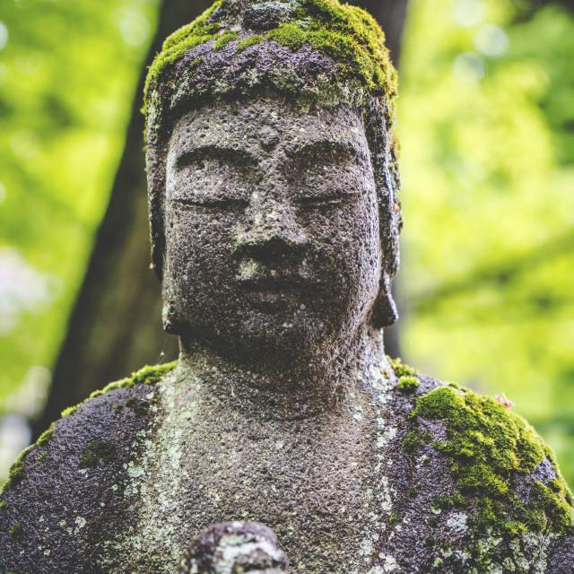 """""""Nikko Buddha Statue"""" stock image"""