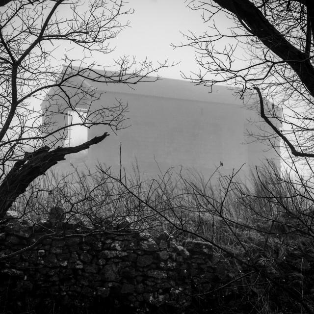 """""""Fog Shrouded Barn in Monochrome"""" stock image"""