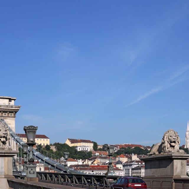 """Chain bridge with lion statue Budapest Hungary"" stock image"