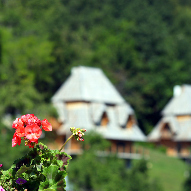 """""""flowers and cottages mountain landscape summer season"""" stock image"""
