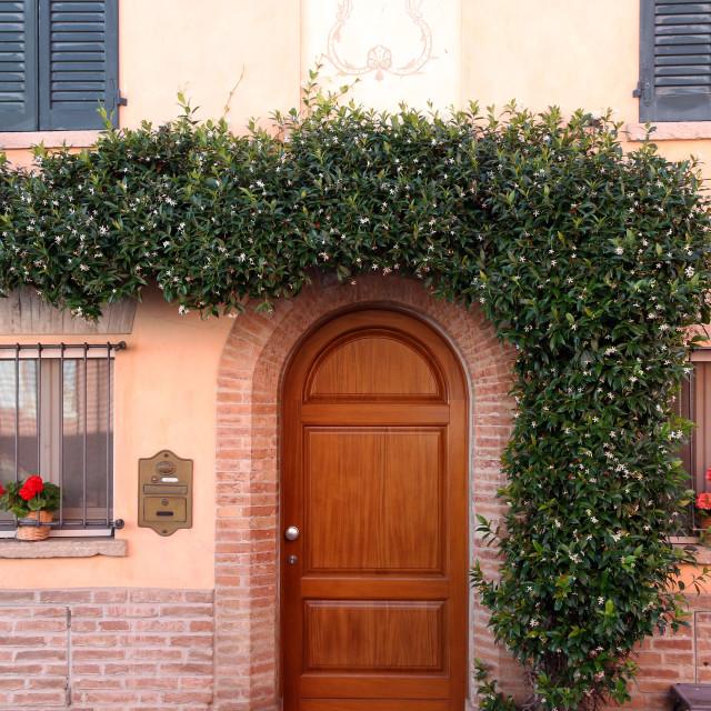 """""""House with liana on wall Rimini Italy"""" stock image"""