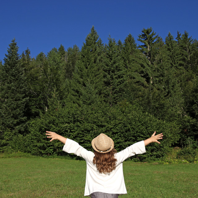 """little girl with hands up looking at the forest"" stock image"