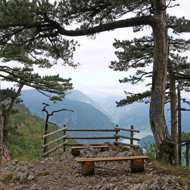"""Banjska stena viewpoint Tara mountain Serbia"" stock image"