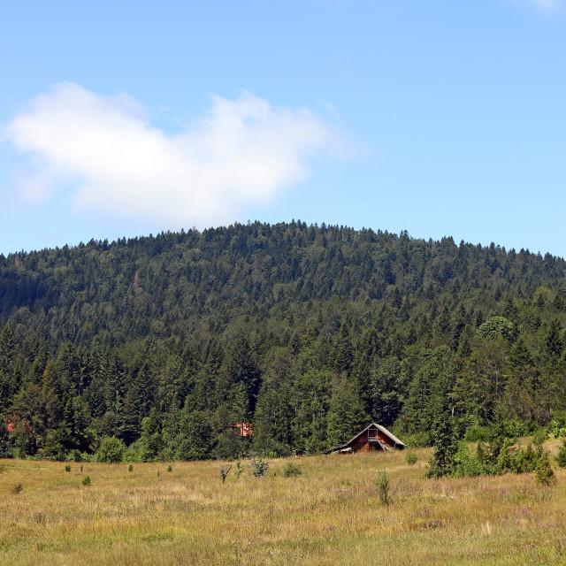 """""""wooden cottage under hill landscape"""" stock image"""