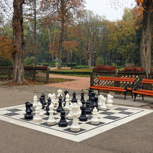 """black and white chess figures in park autumn season"" stock image"