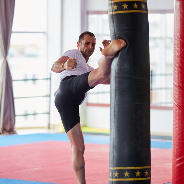 """Kickbox fighter training"" stock image"