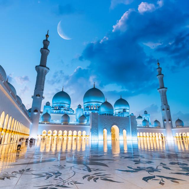 """""""A night in Abu Dhabi"""" stock image"""