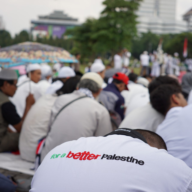 """""""Demonstration to Support Palestine"""" stock image"""