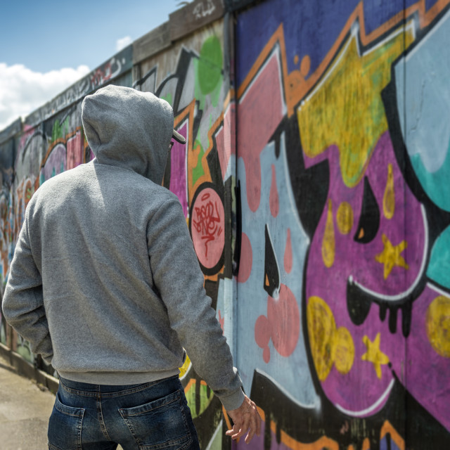 """""""back view of a male wearing a hoodie standing by a wall of graffiti, street crime concept."""" stock image"""