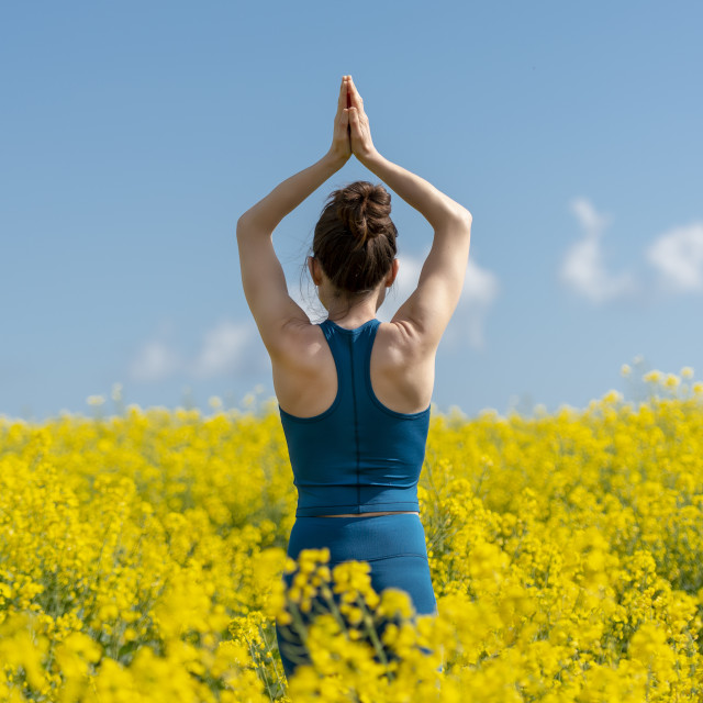 """""""back view of a young woman meditating with arms raised in a yellow field"""" stock image"""
