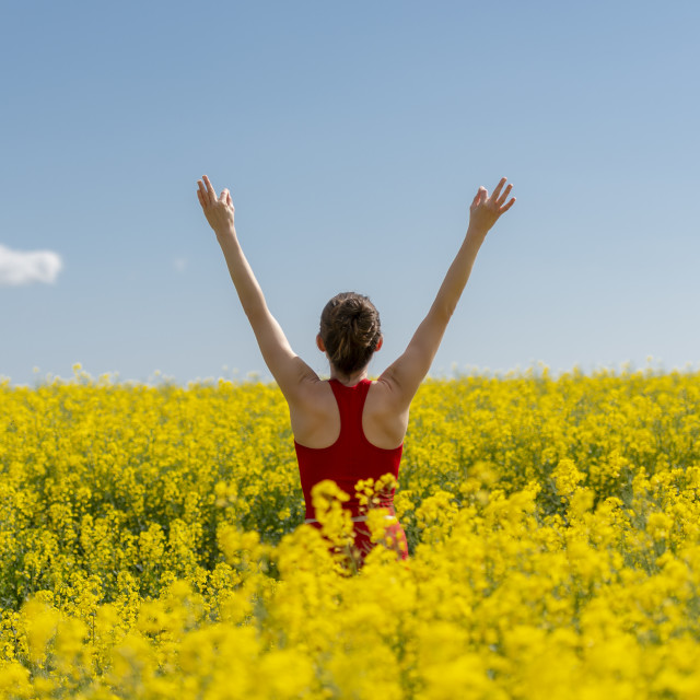"""""""back view of a young woman wearing red with arms raised in a yellow field"""" stock image"""