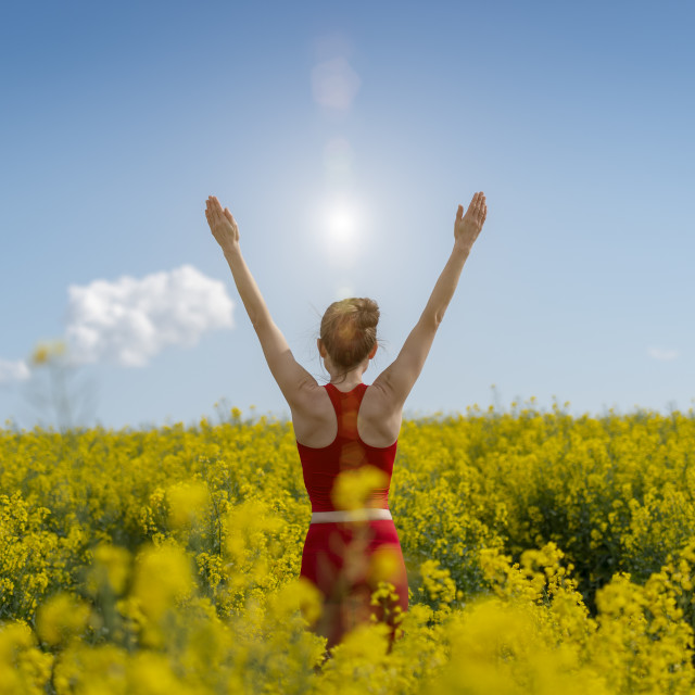 """back view of a young woman wearing red with arms raised in a yellow field"" stock image"