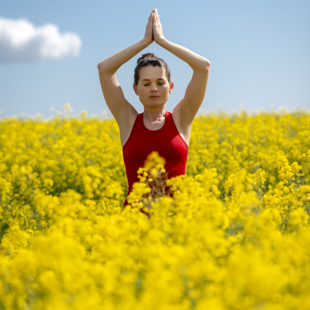 """""""woman wearing red practicing yoga and meditating in a yellow field"""" stock image"""