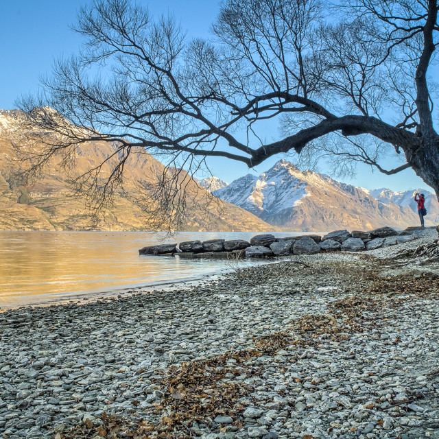 """Wakatipu Lakeside"" stock image"