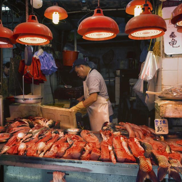 """""""Fish and The Fish-Man: Fresh Fish Stall, Wan Chai, Hong Kong"""" stock image"""