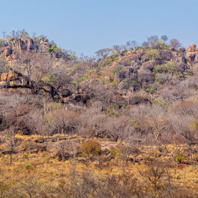 """""""Landscape view in Matobo National Park, Zimbabwe."""" stock image"""