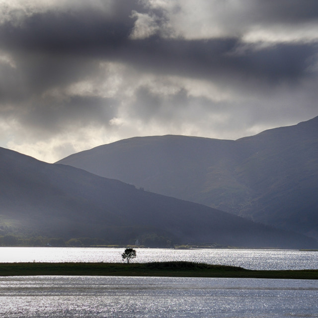 """""""The Lonely Tree - Loch Alsh, Highlands of Scotland"""" stock image"""
