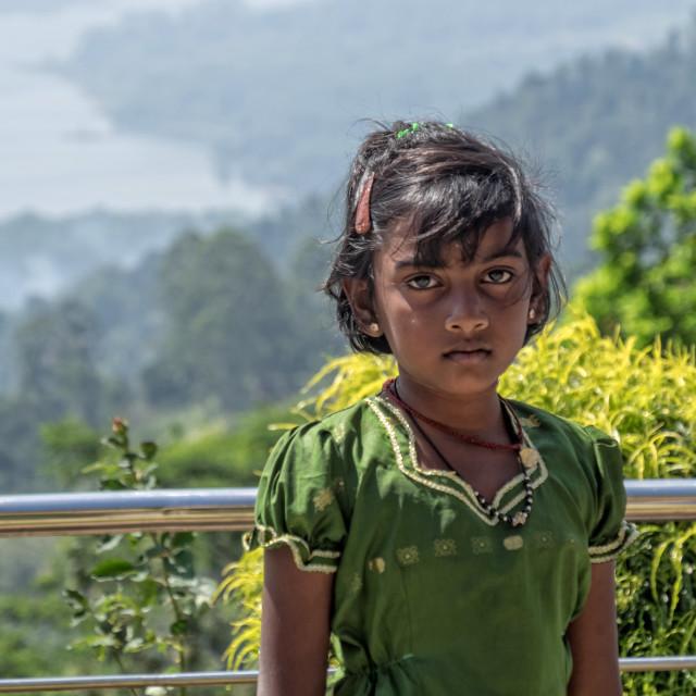 """""""Sri Lankan girl"""" stock image"""