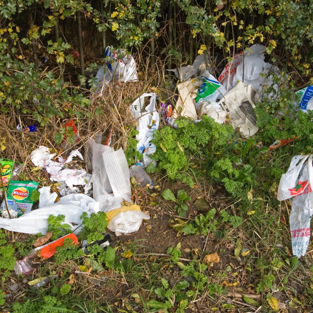 """Litter in Residential Area of Belfast"" stock image"