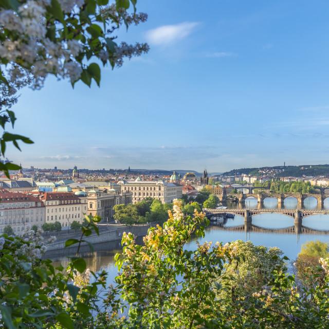 """Vltava river with its bridges and Prague City"" stock image"