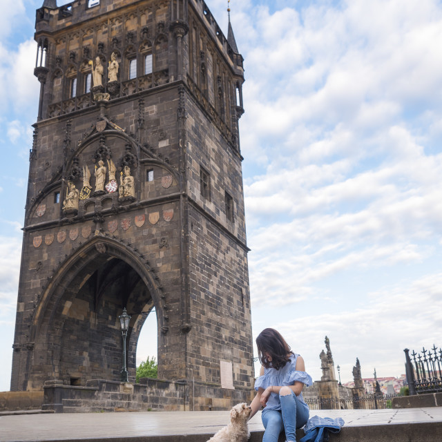 """""""Woman with a dog in front of the tower of Charles Bridge"""" stock image"""