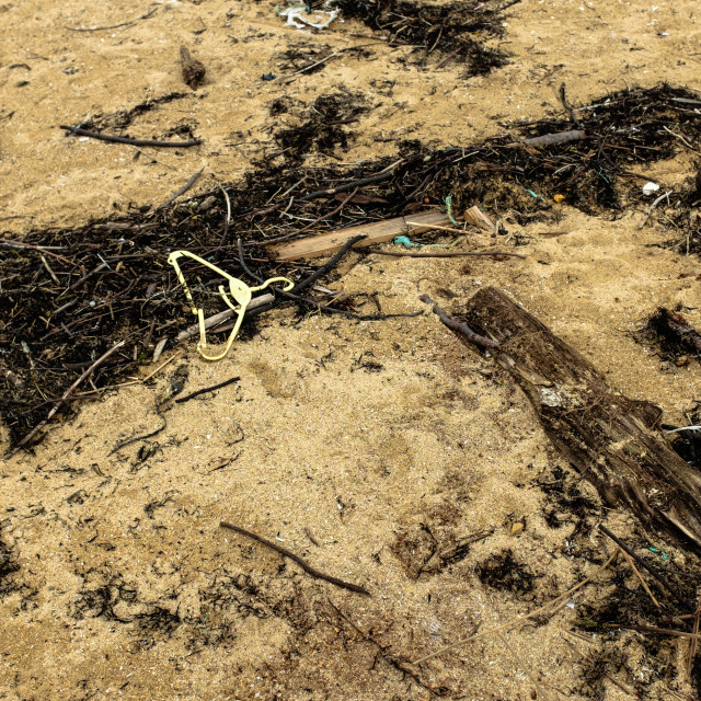 """Beach Plastic"" stock image"
