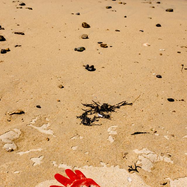"""Beach Plastic Contamination."" stock image"