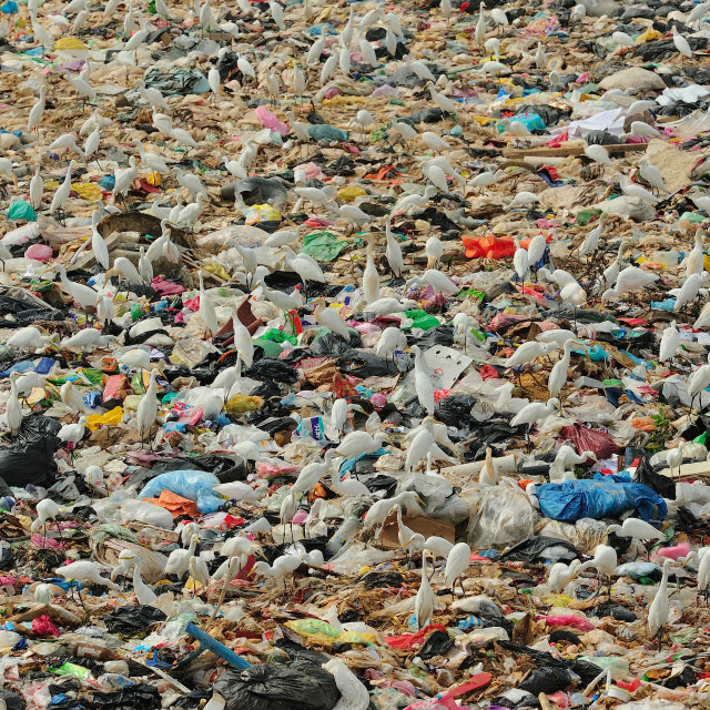 """Sea of waste"" stock image"