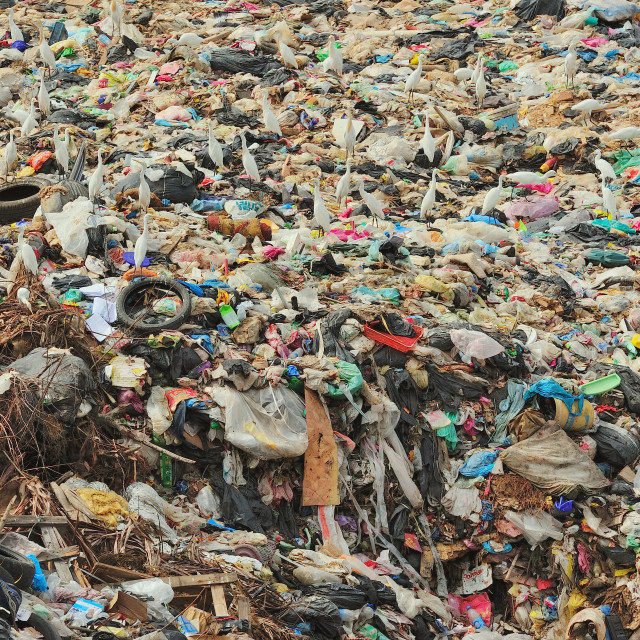 """""""Sea of waste"""" stock image"""