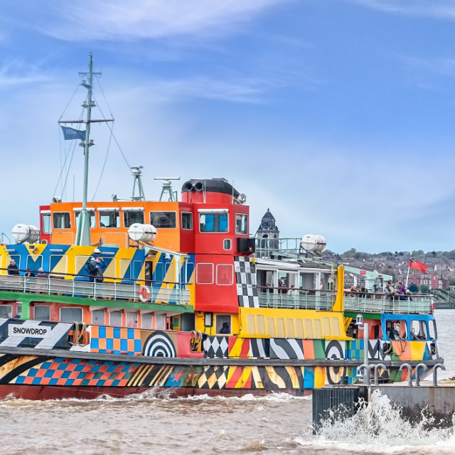 """Mersey Ferry Snowdrop"" stock image"