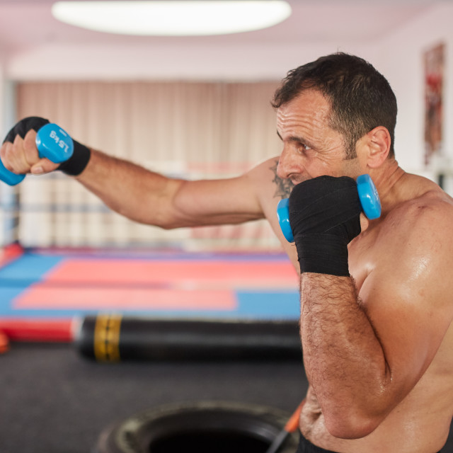 """""""Boxer training with weights"""" stock image"""
