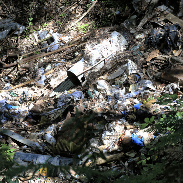 """""""Waste in the Environment"""" stock image"""